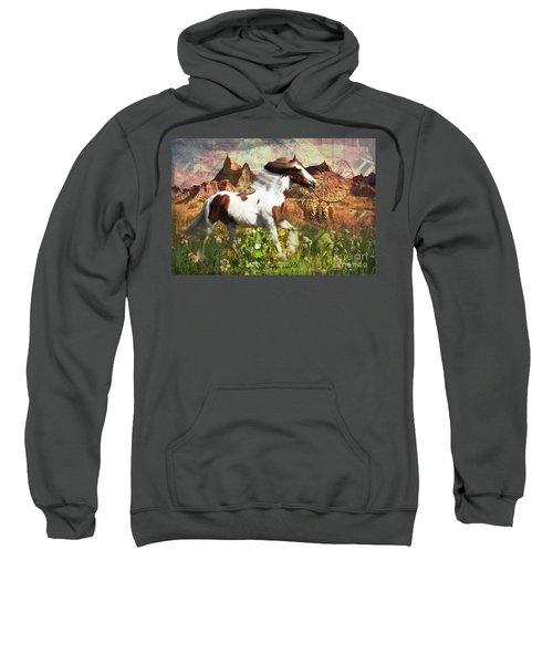 Horse Medicine 2015 Sweatshirt