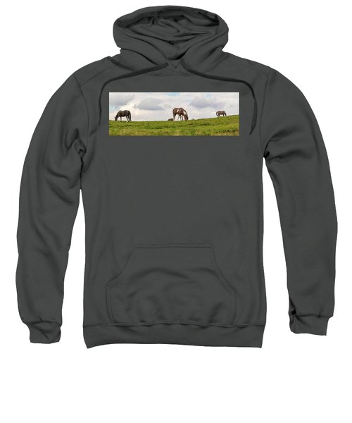 Horses And Clouds Sweatshirt