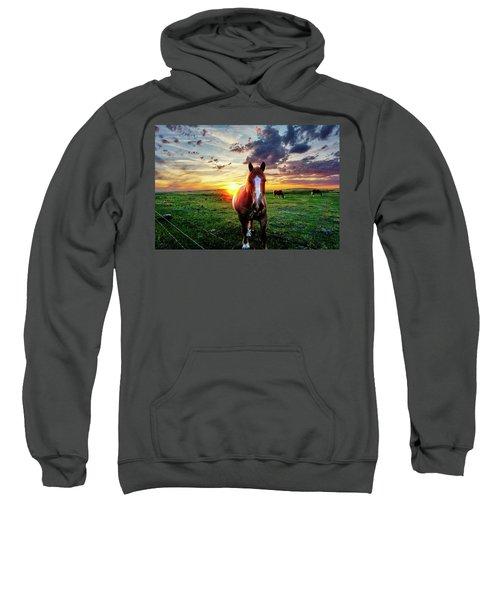 Horses At Sunset Sweatshirt