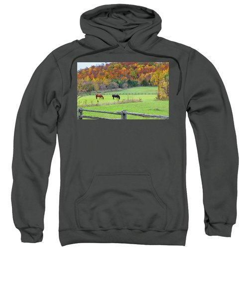 Horses Contentedly Grazing In Fall Pasture Sweatshirt