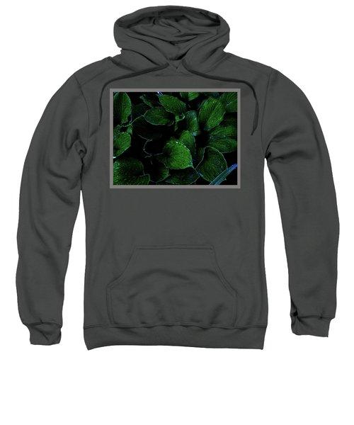 Hostas After The Rain II Sweatshirt