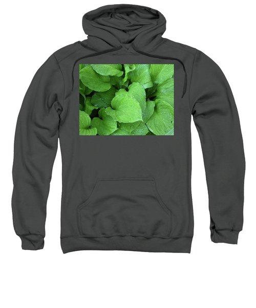 Hostas After The Rain IIi Sweatshirt