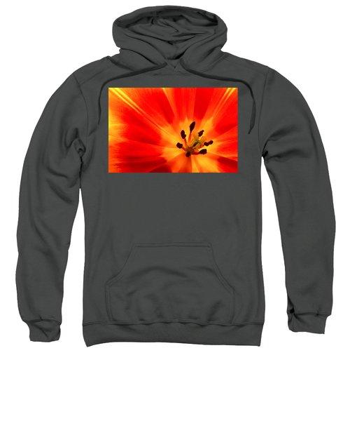 Hot Air Tulip Sweatshirt