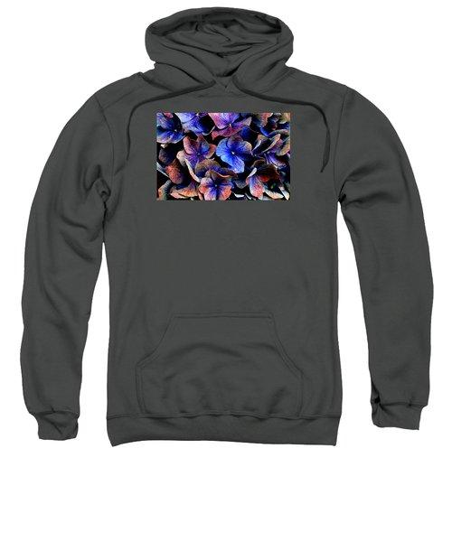 Hues Sweatshirt