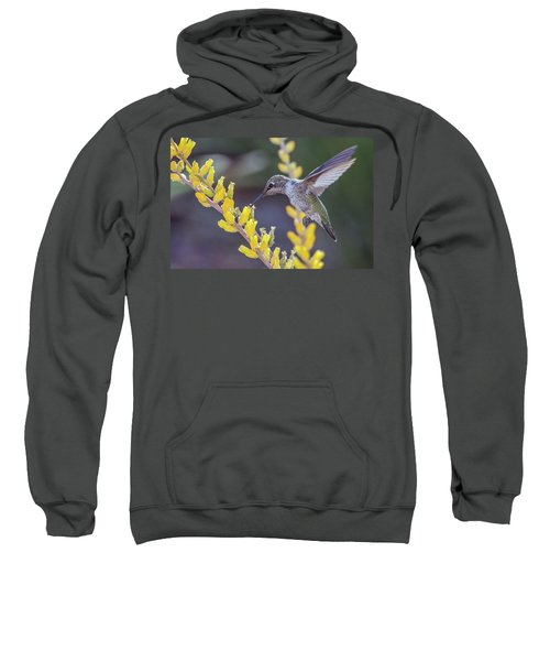 Hummingbird 6750-041818-1cr Sweatshirt