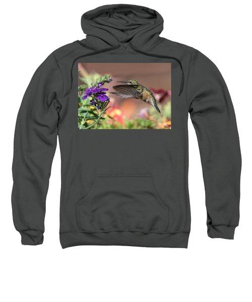 Hummingbird And Purple Flower Sweatshirt