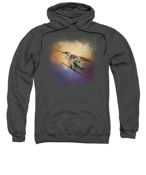 Hummingbird At Sunset Sweatshirt