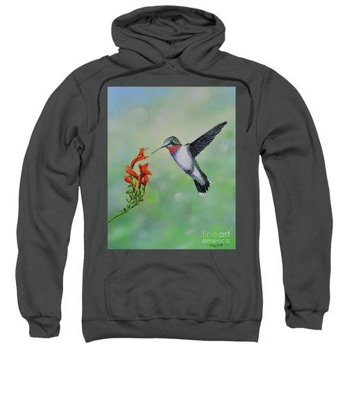 Hummingbird Beauty Sweatshirt