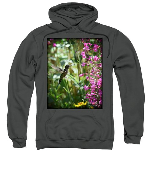 Hummingbird On Perry's Penstemon Sweatshirt