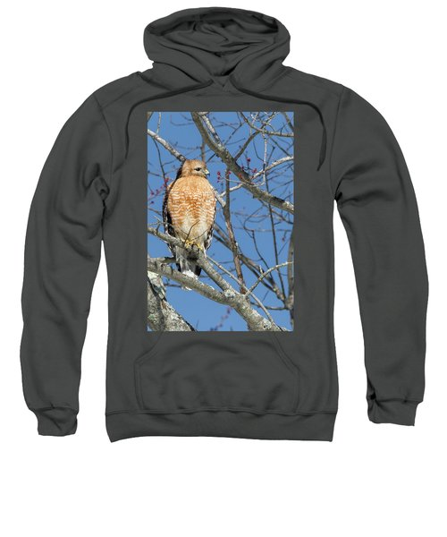 Sweatshirt featuring the photograph Hunting by Bill Wakeley
