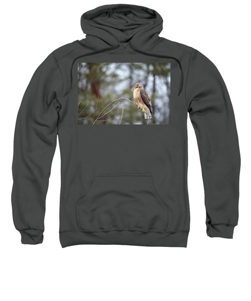 Hybrid Branch Sweatshirt