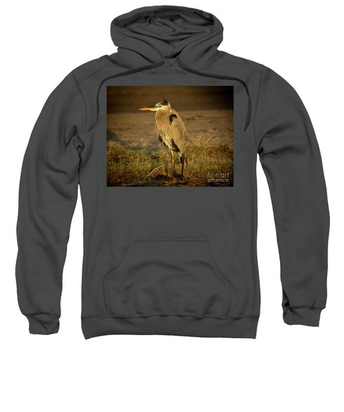 I Know They Are Coming Wildlife Art By Kaylyn Franks Sweatshirt