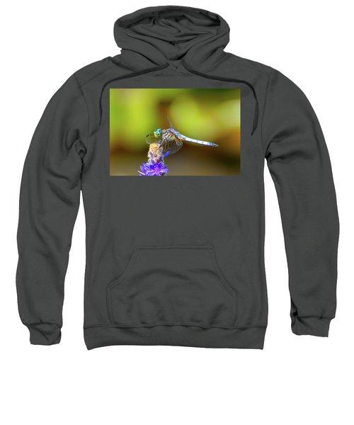 I See You, Dragonfly Sweatshirt