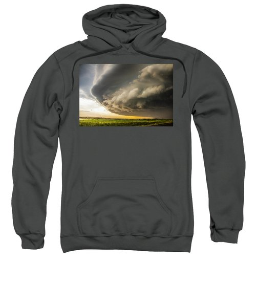 I Was Not Even Going To Chase This Day 020 Sweatshirt