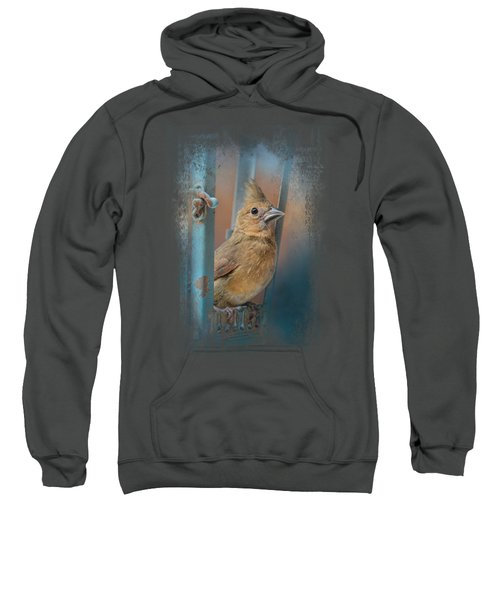 I Will Be Your Light Sweatshirt by Jai Johnson