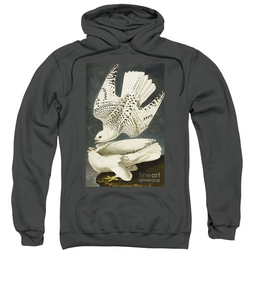 Iceland Or Jer Falcon Sweatshirt