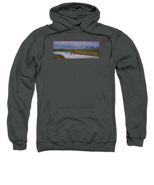 Iceland Sheep Reflections Panorama  Sweatshirt