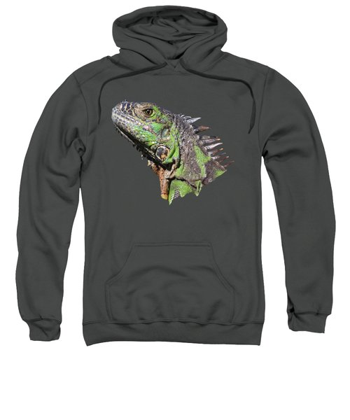 Iguana Sweatshirt