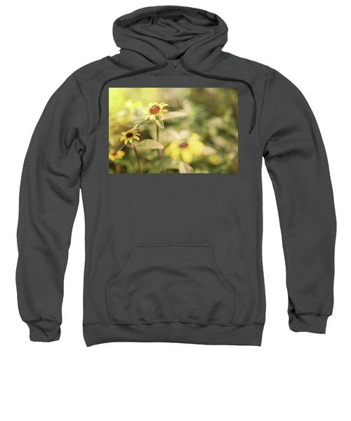 Illuminated Zinnia Sweatshirt