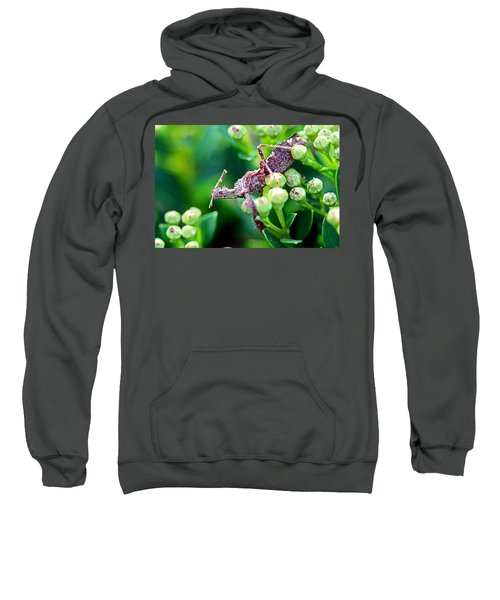 I'm Watching You Sweatshirt