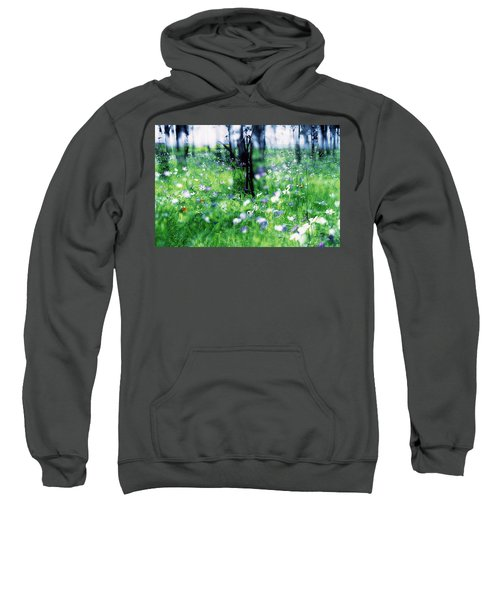 Impressionistic Photography At Meggido 1 Sweatshirt