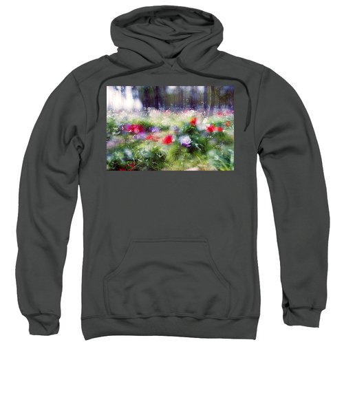 Impressionistic Photography At Meggido 2 Sweatshirt