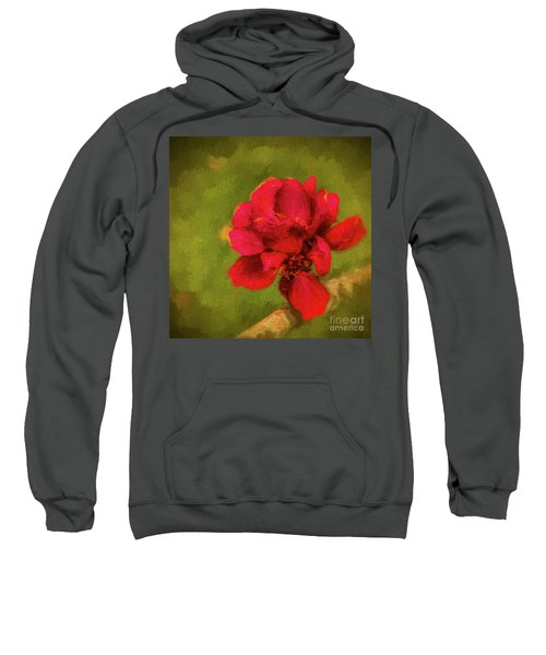 In Bloom Sweatshirt