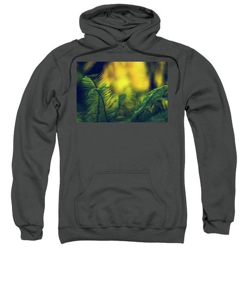 In-fern-o Sweatshirt
