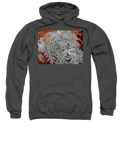 In Perfect Form Sweatshirt