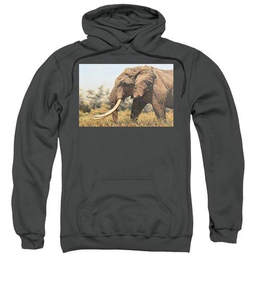 In The Footsteps Of Elders Sweatshirt