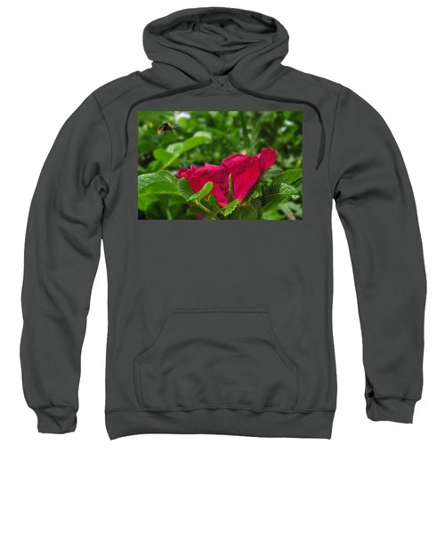 Incoming Rose Sweatshirt