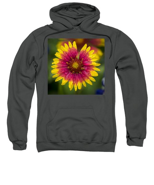 Indian Blanket Sweatshirt