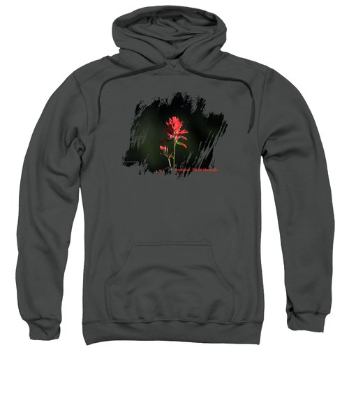 Indian Paintbrush 3 Sweatshirt