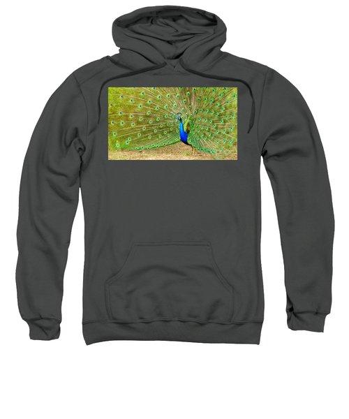 Indian Peacock Sweatshirt