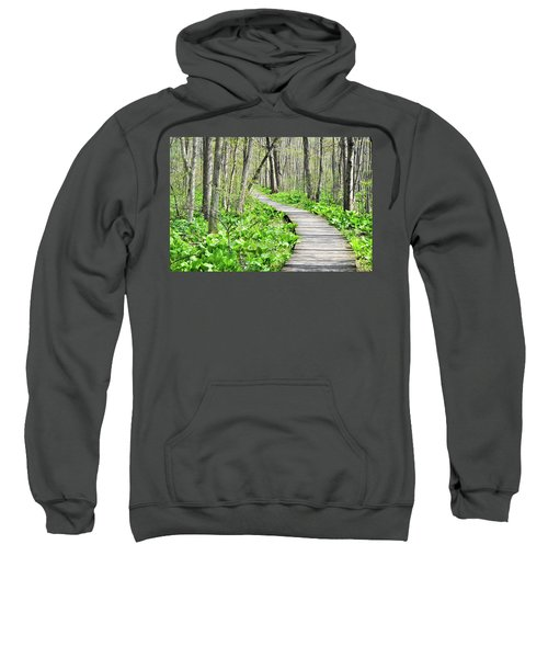 Indiana Dunes Great Green Marsh Boardwalk Sweatshirt