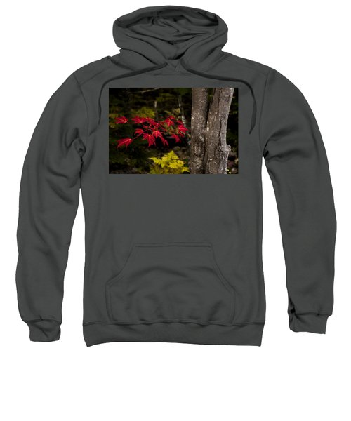 Intensity Sweatshirt