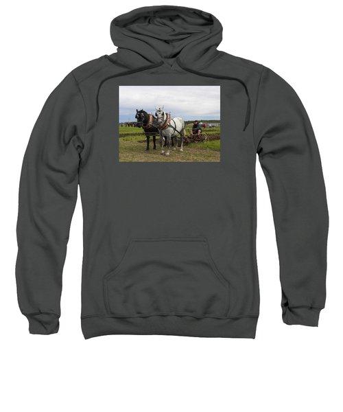 Ipm 3 Sweatshirt