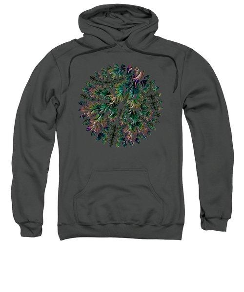 Iridescent Feathers Sweatshirt