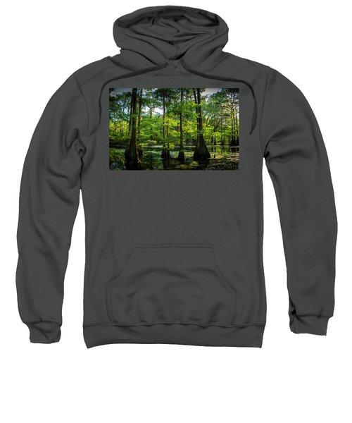 Iridium Paradise Sweatshirt