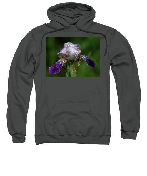 Iris After The Rain 1409 H_2 Sweatshirt
