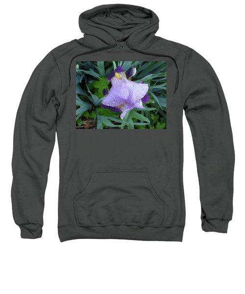 Iris After The Rain IIi Sweatshirt
