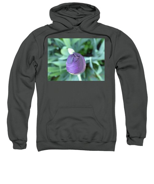 Iris After The Rain V Sweatshirt