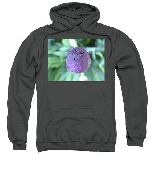 Iris After The Rain Vi Sweatshirt