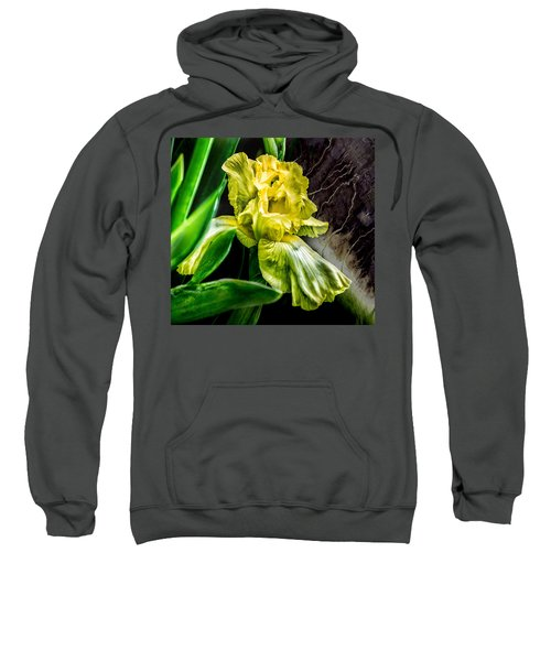 Iris In Bloom Two Sweatshirt
