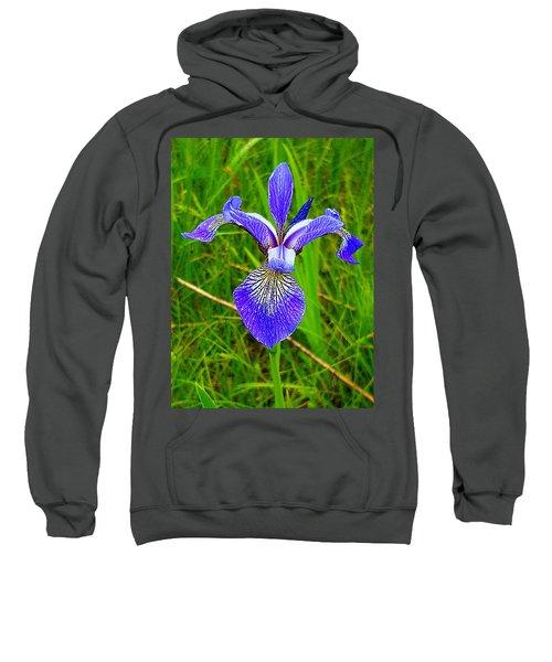 Iris Sweatshirt