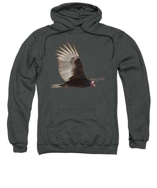 Isolated Turkey Vulture 2014-1 Sweatshirt