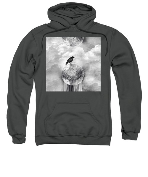 It's A Crow's World Sweatshirt