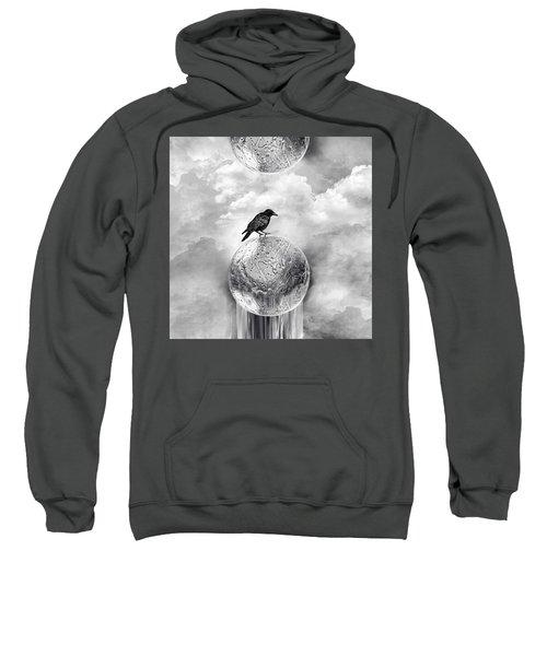 It's A Crow's World Sweatshirt