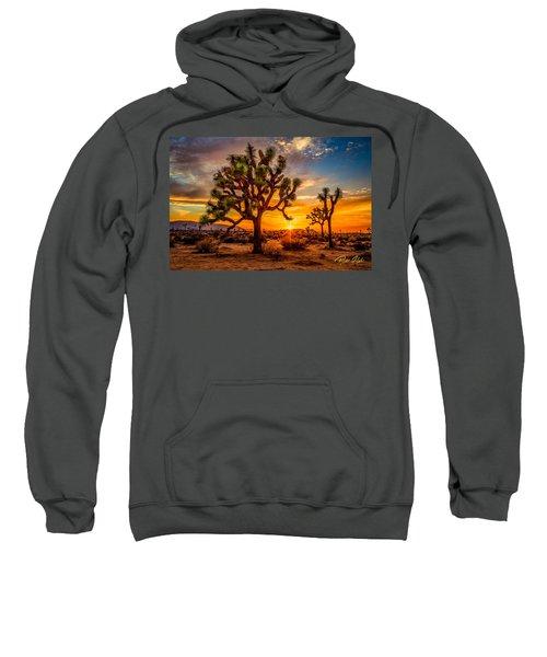 Joshua Tree Glow Sweatshirt