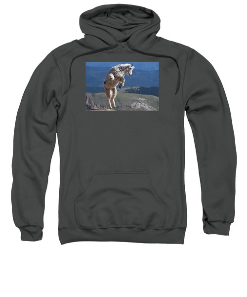 Sweatshirt featuring the photograph Jump by Gary Lengyel